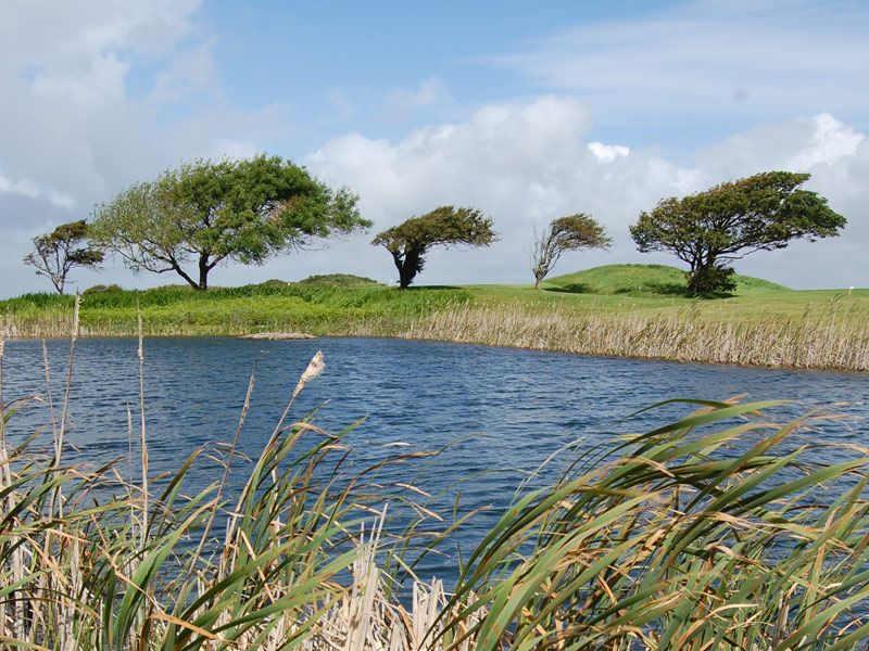 Luxury Ireland Golf Day Tour: Galway