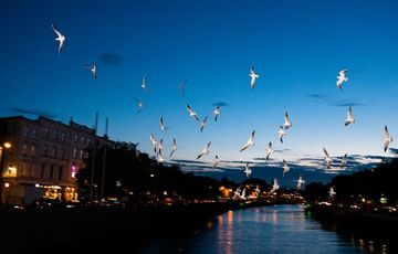 Thumb_dublin-at-night-istock-858008488