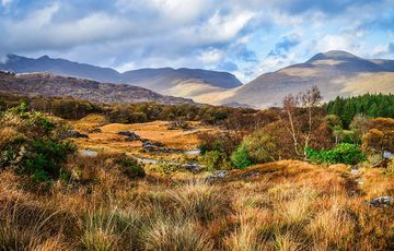 Thumb_ring-of-kerry-istock-507643200