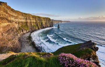 Thumb_cliffs-of-moher-view-flowers-istock-636952424