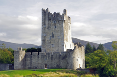 Wild South: 7-Day Tour of Ireland